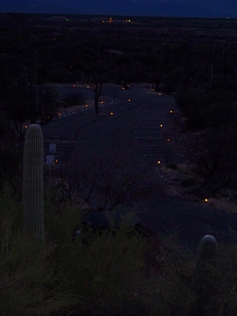 Parking lot Lights