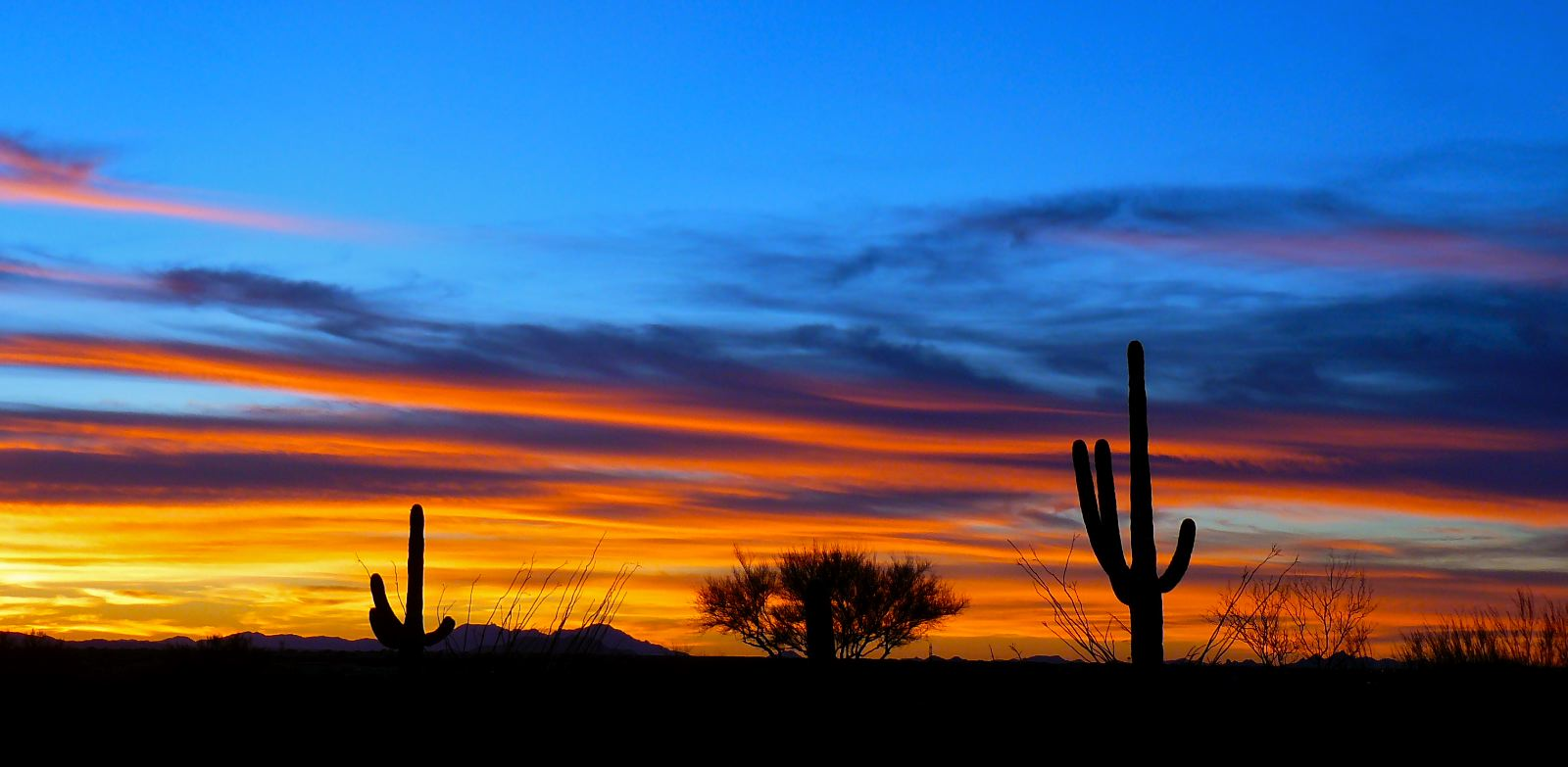 Recent Tucson Sunset In January My Tucson Wedding