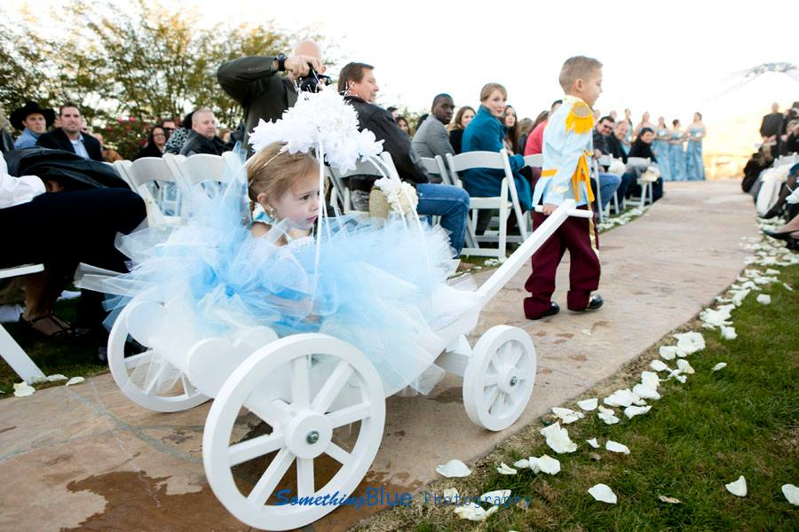 Ideas about your Ring Bearer and Flower Girl My Tucson Wedding