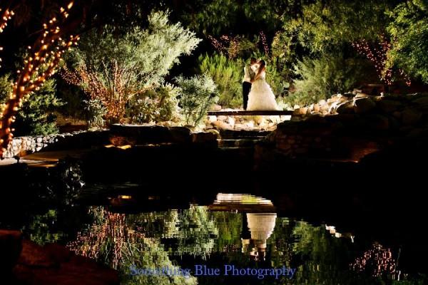 Reflecting Pond at Night